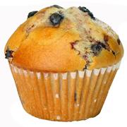 Minnesota state muffin blueberry minnesota homeschoolers alliance